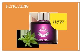 Vitalizing Verbena
